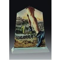 Cristal grabado alta calidad 5022 premio con fotografía