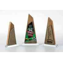 Cristal y piedra grabado 5018 premio empresa
