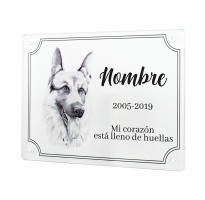 Placa grabada para muerte mascota METACRILATO ap-2201