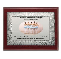 Placa de homenaje grabada económica FS-9023-1-2-3