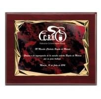 Placa de homenaje grabada ALTA CALIDAD FS-9049-1-2-3+E