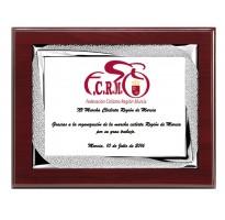 Placa de homenaje grabada ALTA CALIDAD FS-90451-2-3+E